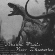 American Museum of Natural History Ad Campaign